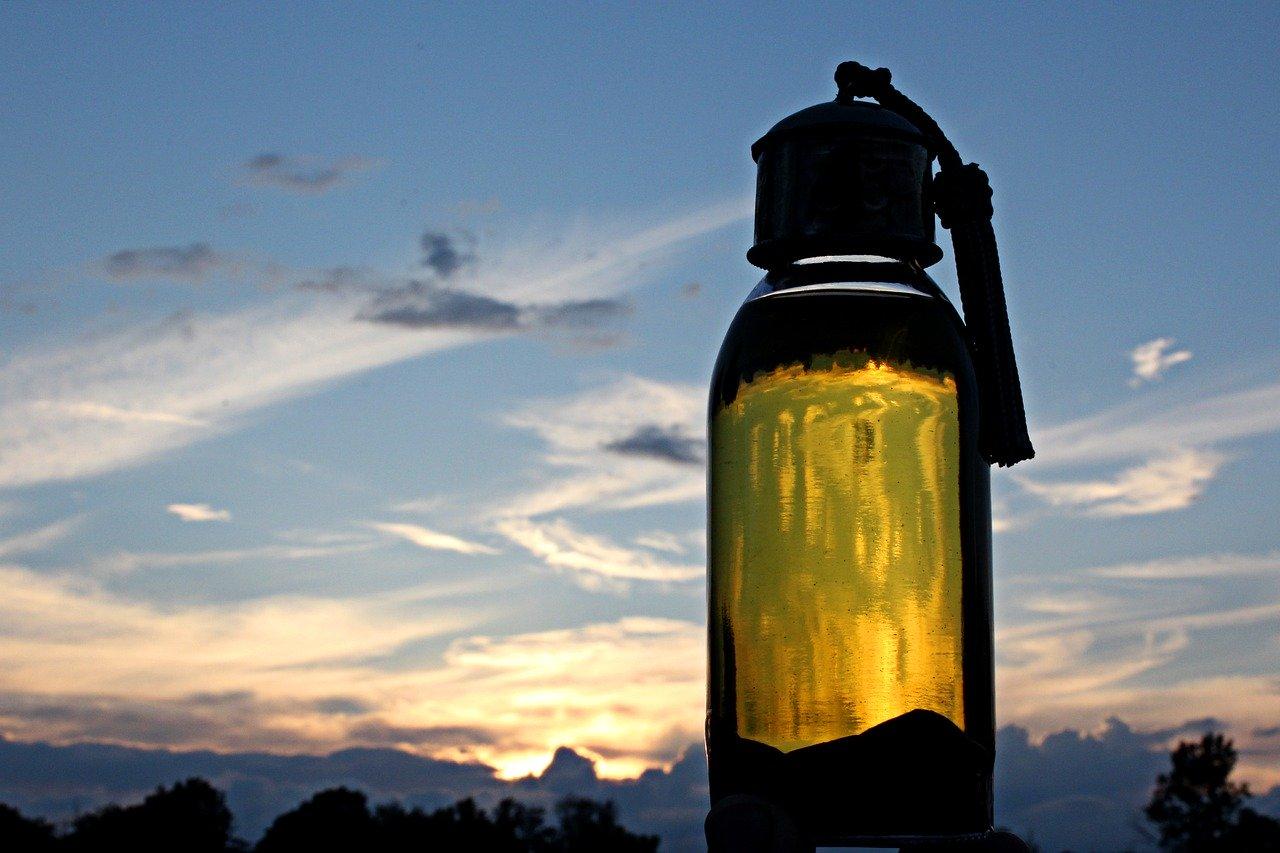 You are currently viewing Les secrets de l'huile d'Argan Bio et Naturelle