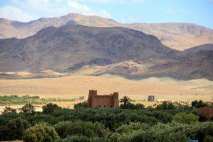 terroir de Marrakech